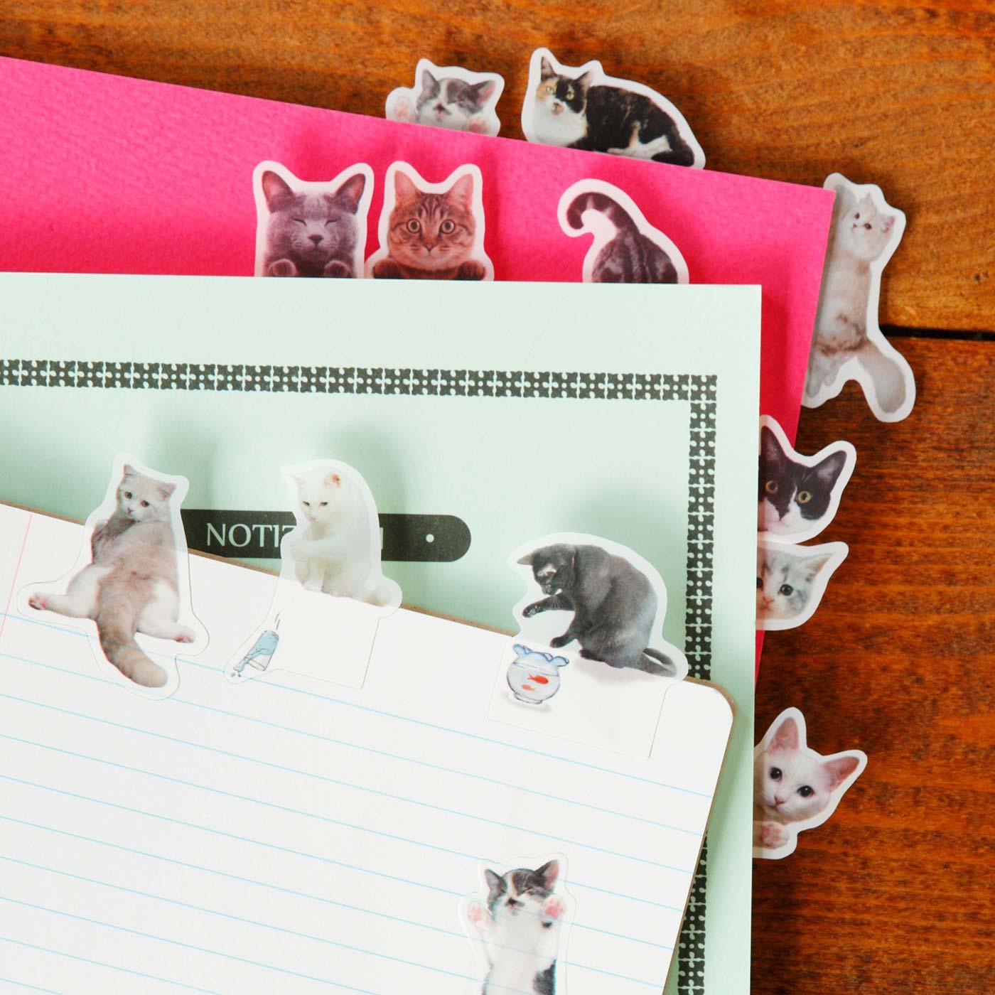 手帳やノートから顔を出したり、よじ登ったりぶら下がったり…猫好きにはたまらないフリーダム猫ふせん